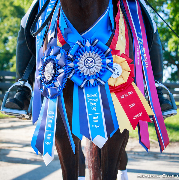 RyannDressagePonyCup2017-16.jpg