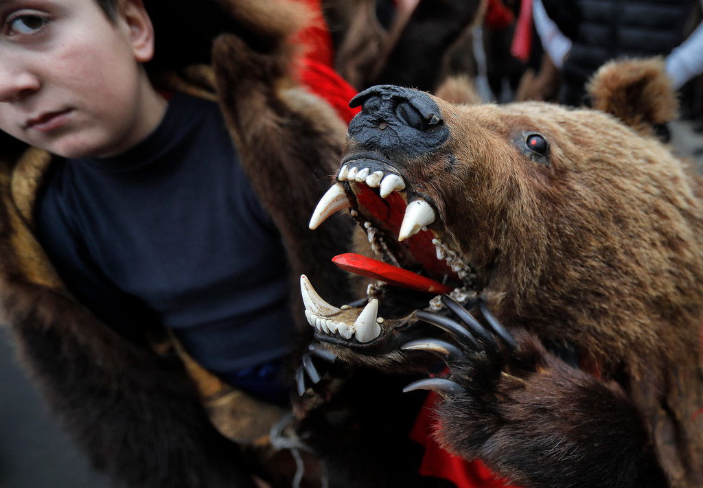 . In this Saturday, Dec. 30, 2017 picture children wearing a bear fur costumes pause during an annual bear parade in Comanesti, Romania. The tradition, originating in pre-Christian times, when dancers, wearing colored costumes or animal furs, went from house to house in villages singing and dancing to ward off evil, has moved to Romania\'s cities, where the ritual is performed for money.(AP Photo/Vadim Ghirda)