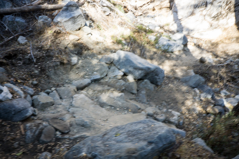 20181118015-MWBA Gabrielino Trailwork.jpg