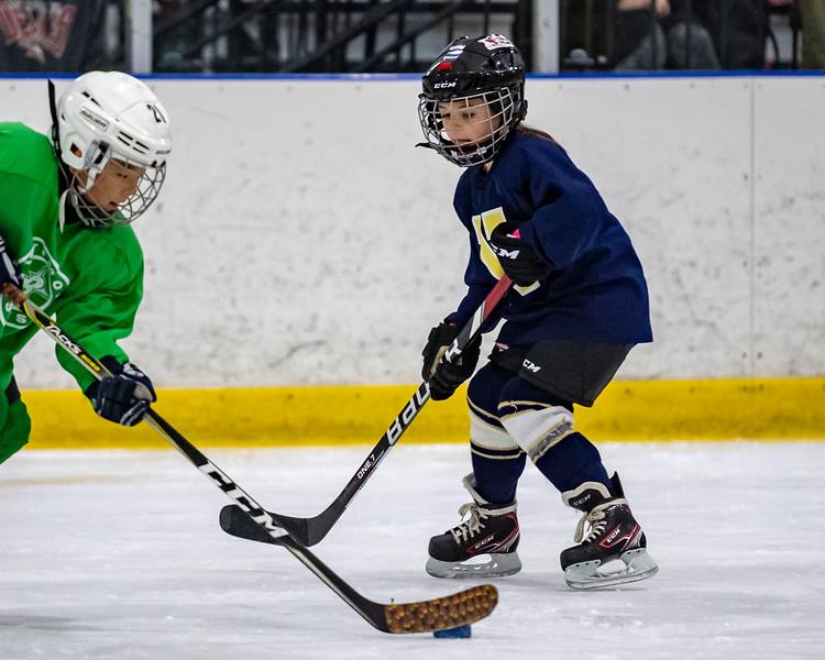2019-02-04-Ryan-Naughton-Hockey-100.jpg