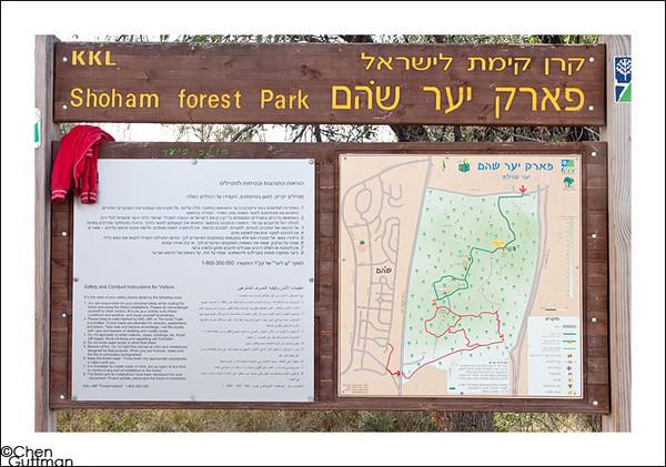 13-02-10 - Picnic at park Shoham