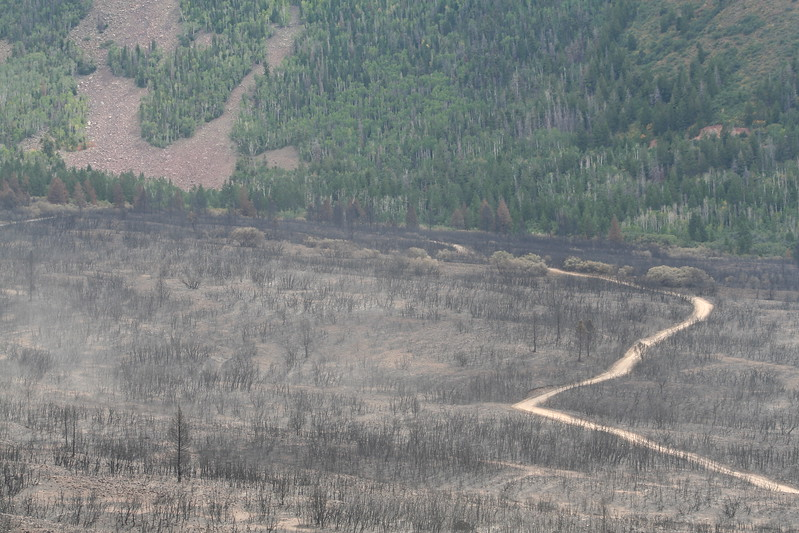 20080909-151 - LaSal Mountain Loop - 18 Fire.JPG