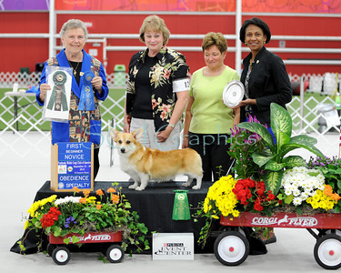 Obedience Win Photos 2013