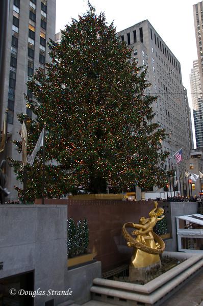 Rock Center Tree with Prometheus Statue