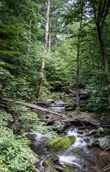 Upstream of the crossing.