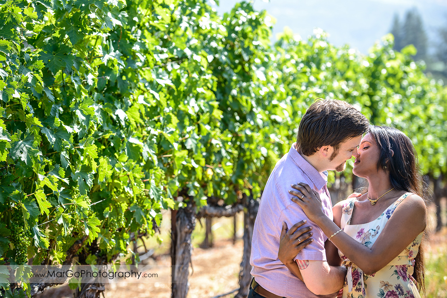 man in pink shirt and Indian woman in flower dress kissing in the vineyard during engagement session at Castello di Amorosa in Calistoga