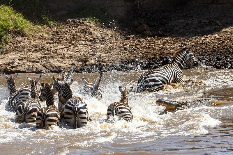 Kenya 2015-02519.jpg