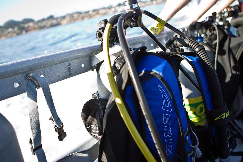 01-05-12_Monterey_Boat_Dive_Roeder_32.jpg