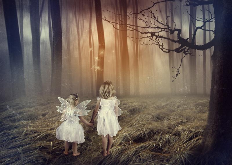 Fairies & Fantasy