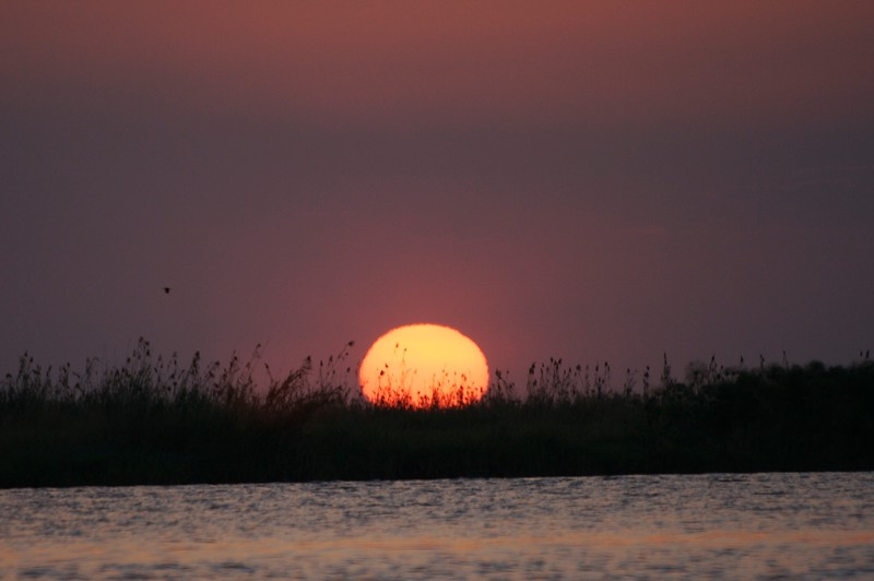 Zambezi sunset.jpg