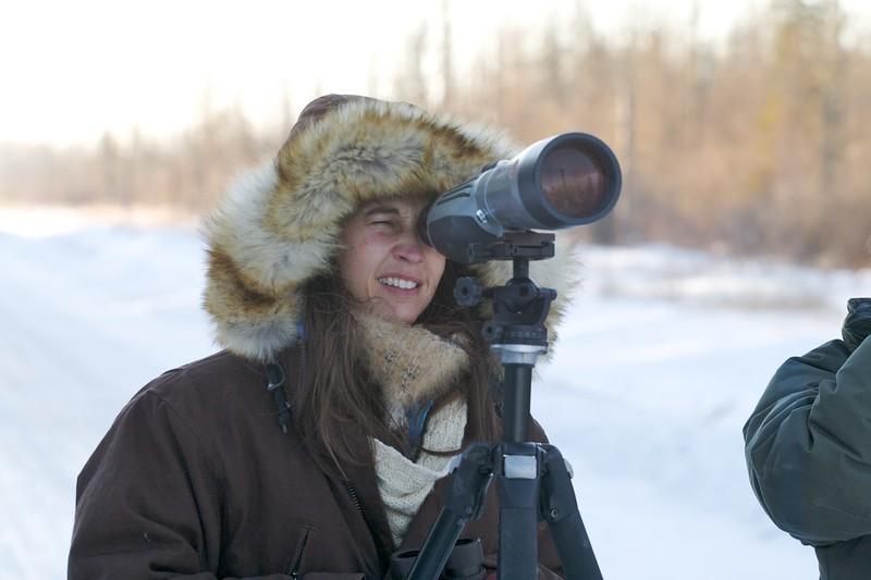 birders looking at lifer Great Gray Owl McDavitt Road Sax-Zim Bog MN IMG_1363.jpg