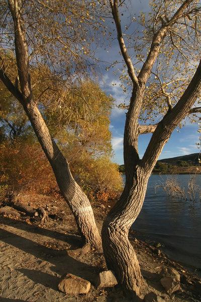 Lake Elizabeth 113_filtered.jpg