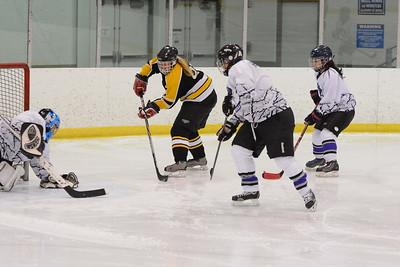 Game 2 - Ice Picks vs Metro Blades