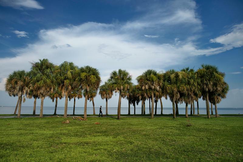 Man walking near beach in St Peterburg Florida