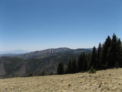 Jemez Mountain Trail Run 2010