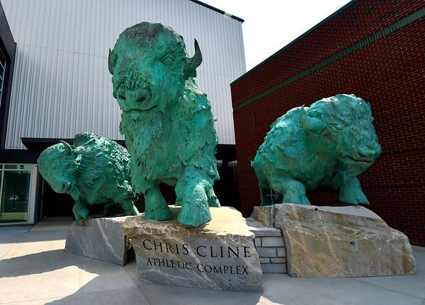 Bison Statues-at athletic HOF
