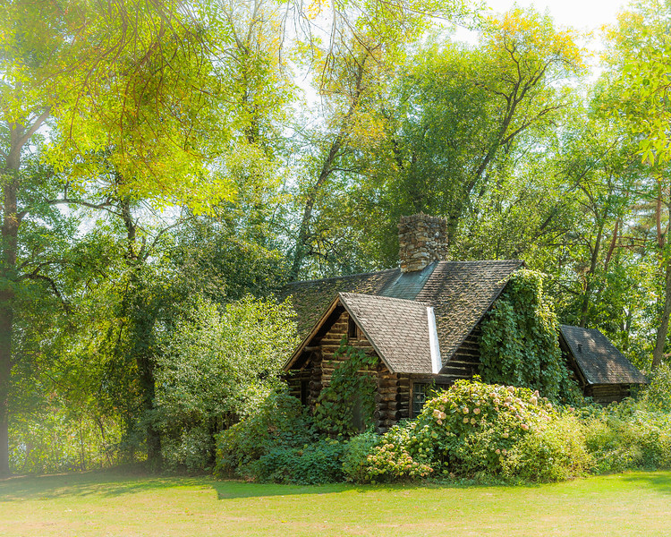 playhouse in the woods resize.jpg
