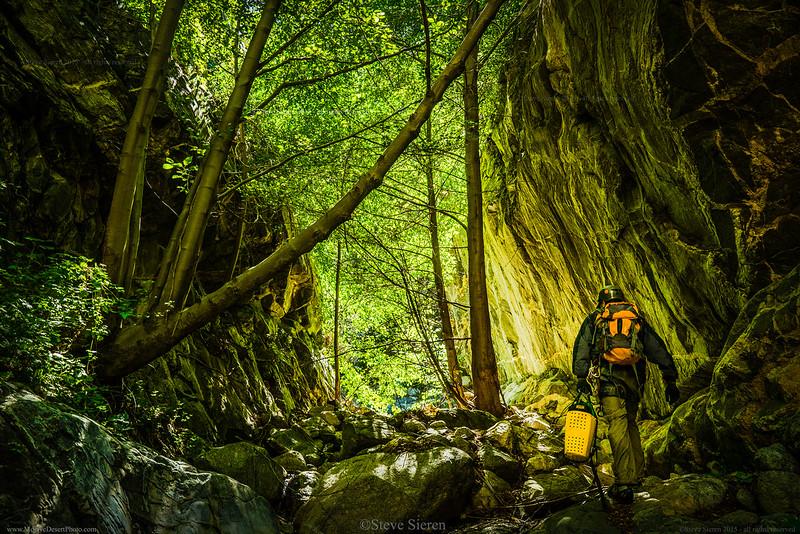 San_Bernidino_Mountains_Canyon_Light_©Steve_Sieren_{Filename»}.jpg
