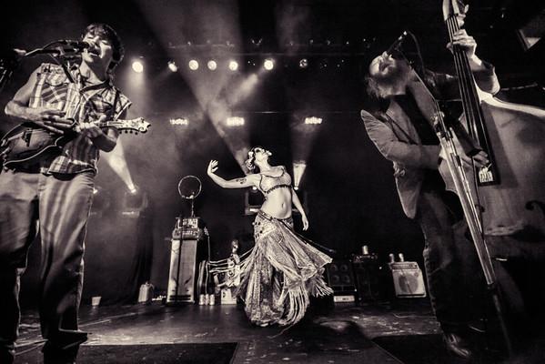 Bands (Live & Promo)