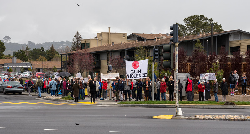 Tam and Redwood Walkout (50 of 91).jpg
