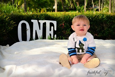Ethan's One Year Old session