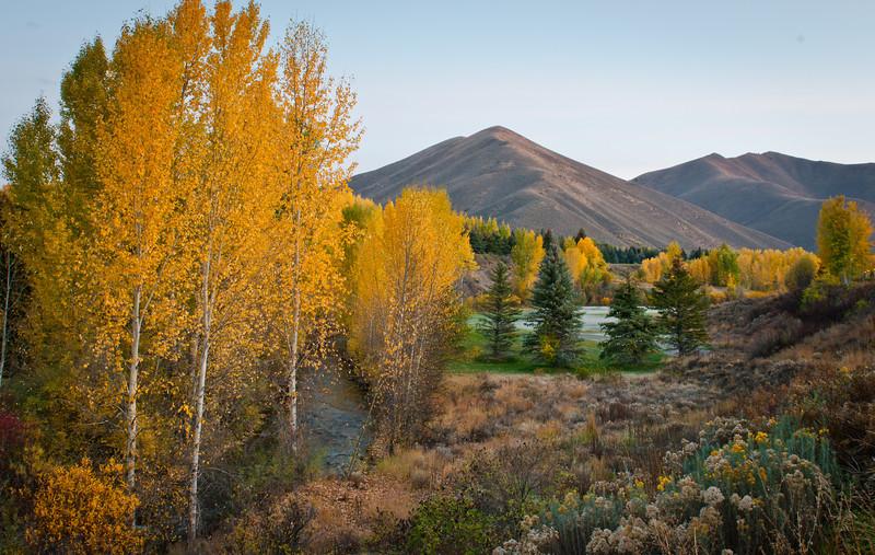 Fall Idaho-1.jpg