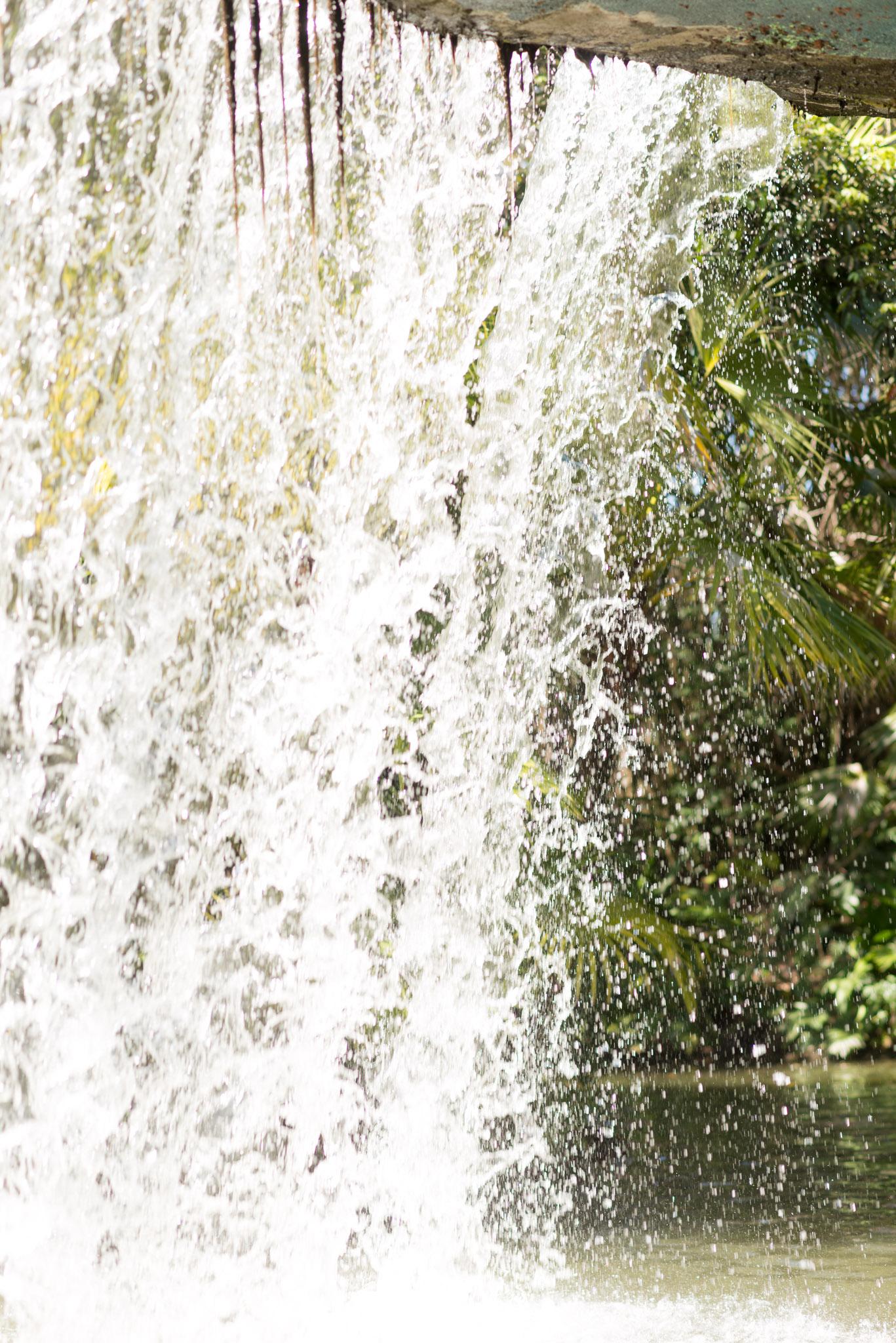 Jungle Cruise - Back Side of Water - Walt Disney World Magic Kingdom
