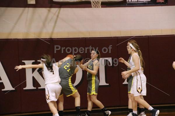 girls bball regional final v. orangeville . 2.9.17