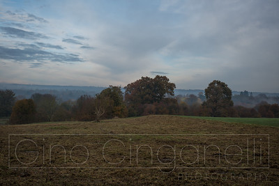 Late Autumn Scenes (at Mote Park Maidstone)