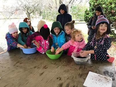 First Grade Fernbrook Farms