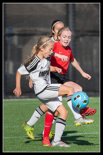 Spirit Fall Soccer