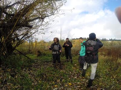 Wetlands Wildlife Exploration 3Nov15