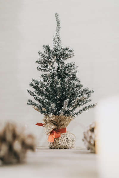 Nicole_Jason_Wedding_Holiday_Inn_Elgin_Illinois_December_30_2018-21.jpg