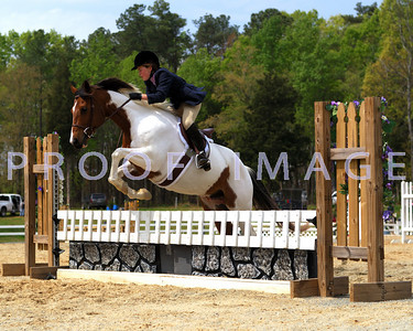 2007 HORSE SHOWS