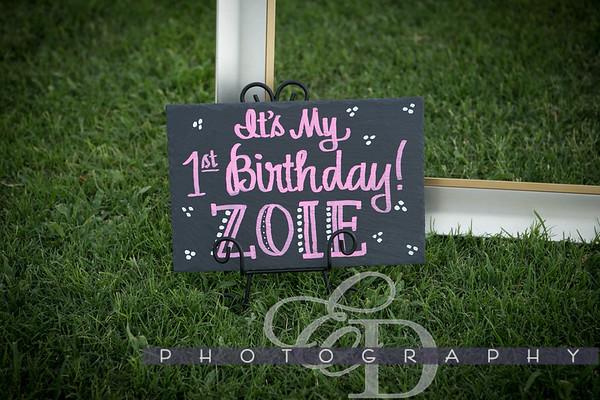 Zoie's First Birthday