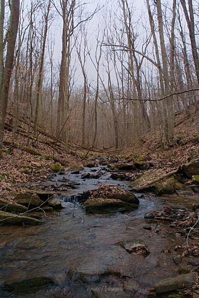 Gundpowder Creek, MD