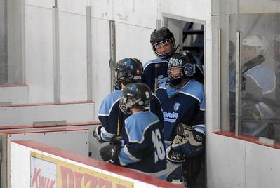 Hockey 2010/2011