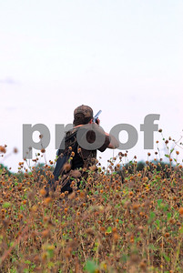 hunting-is-easier-than-learning-regulations