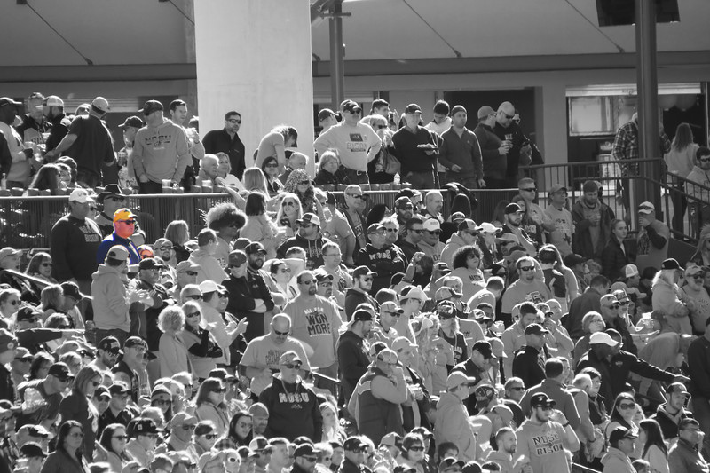 Crowd Shot - Jim-Vicki.jpg
