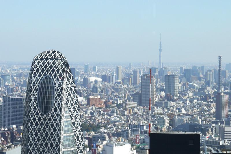 19-Japan2011_2355.JPG