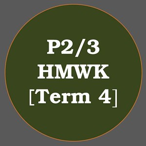 P2/3 HMWK T4