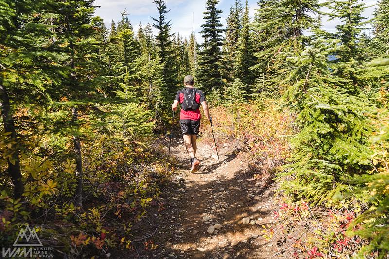 Whistler Alpine Meadows (WAM) 2021 60km and 13km