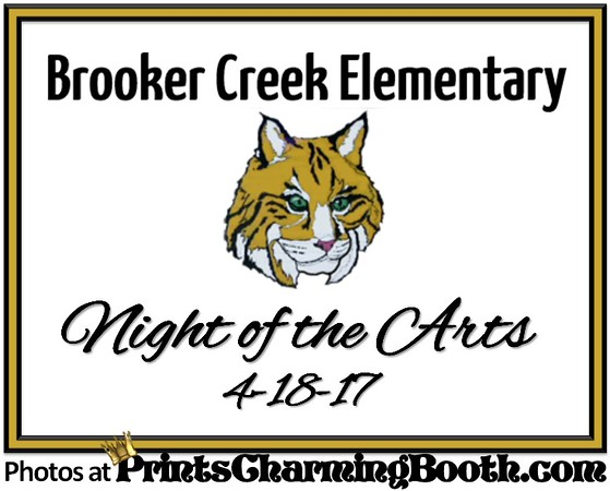 4-18-17 Brooker Creek Elementary - Night of the Arts.jpg