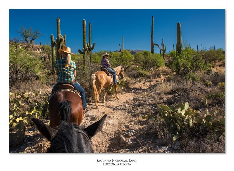 Arizona_110617_1443.jpg