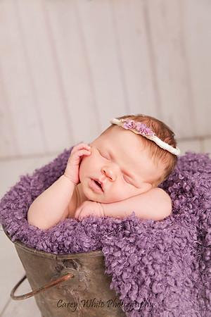 Lillian:16 Days New