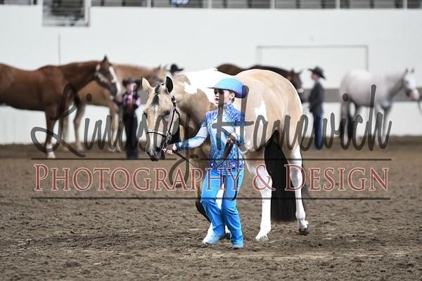 Junior Western Showmanship at Halter - Thursday