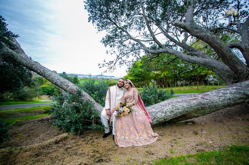 Zoheem & Alishah Wedding Photoshoot