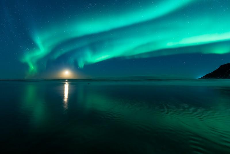 Moonrise-serenade-II-copy.jpg