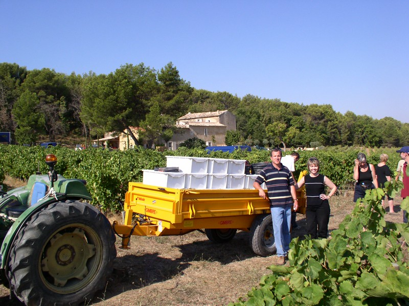 loading grapes 2.JPG