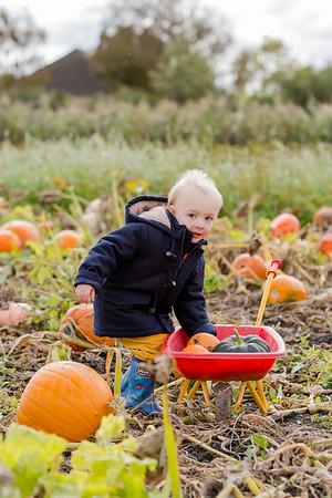 Arthur @ The Pumpkin Patch 20
